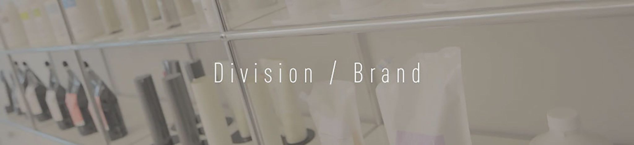 Division / Brand